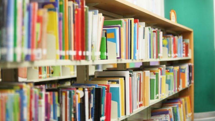Nigeria's Zamfara state spends N135m to buy books for schools