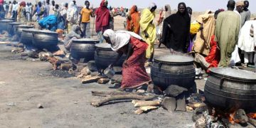 Northeast Humanitarian crisis: Presidential Committee meets with Aid Agencies