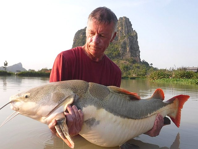 Fisherman -TVC