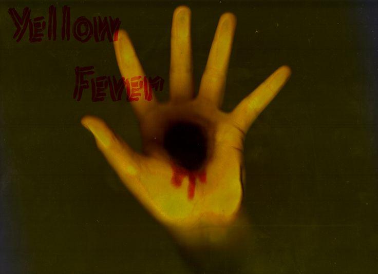 Yellow-Fever-TVCNews