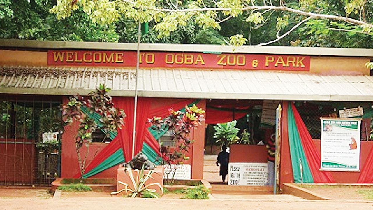 Ogba-zoo-TVCNews
