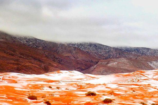 Sahara-Desert-Snow-TVCNews