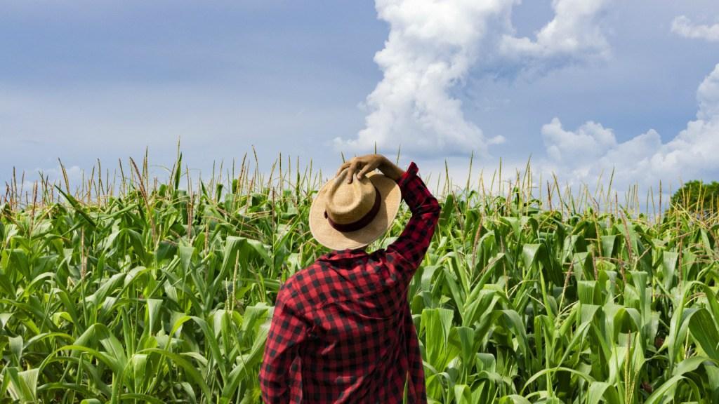 AgricultureInformationCentre-TVCNews