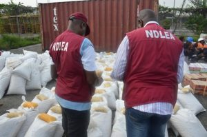 Kano drug officials arrest two suspects with Narcotics
