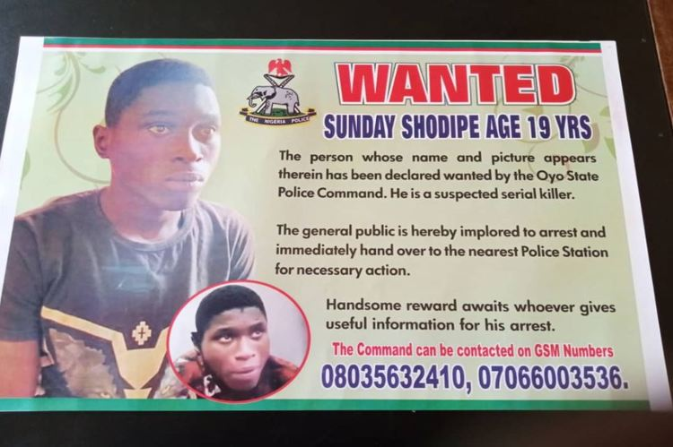 Police place N500,000 bounty on suspected serial killer - TVC News ...