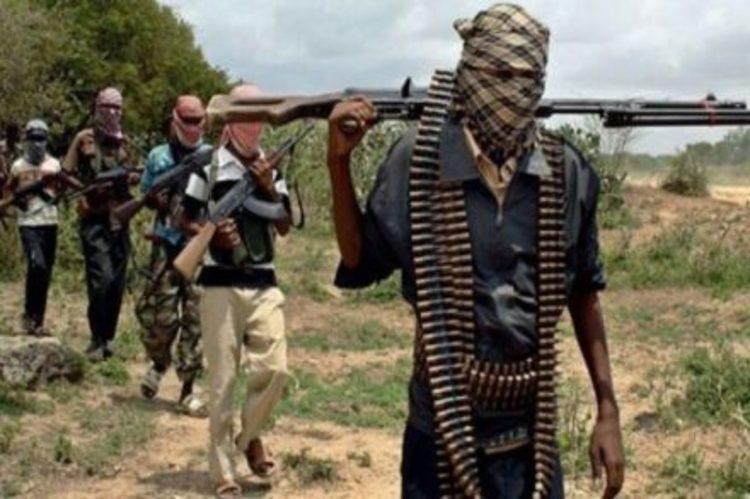 Bandits attack farmers, five Communities in Zamfara, kill forty-two