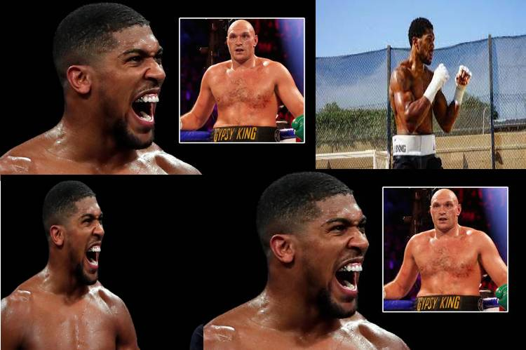 """Tyson Fury has """"no place to hide""""  – Anthony Joshua"""