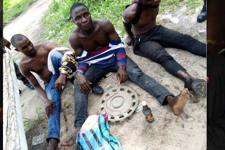 Police in Delta State arrest suspected ritualists, native doctor with two skulls