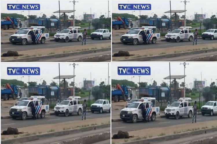 Latest Breaking News In Nigeria: Police Deny shooting anybody at Ojota