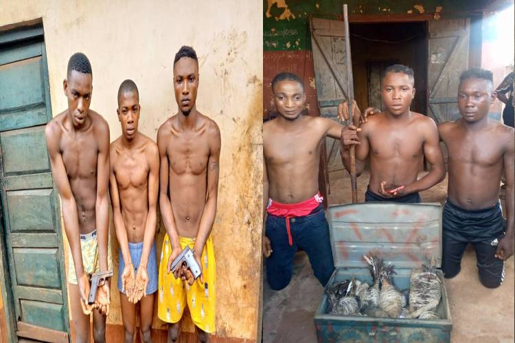 Latest Breaking News about Security in Kogi State: Security operatives arrest Kidnappers, armed robbers in Kogi State