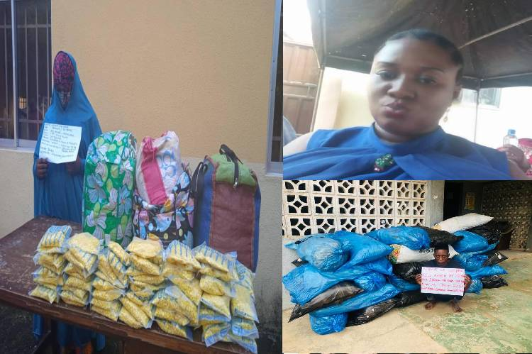 latest arrests by the NDLEA