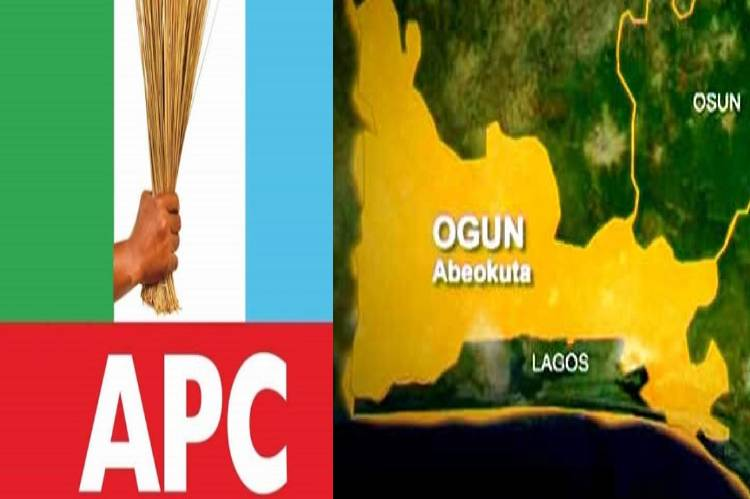 latest news about Ogun council elections, candidates