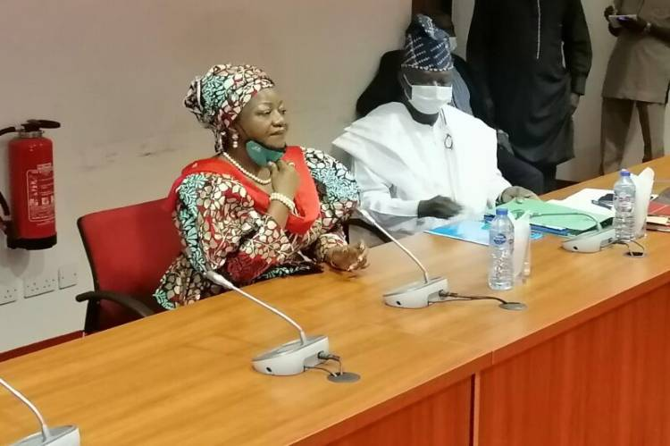 Latest news about is that Senate rejects Onochie, okays five others for INEC jobs