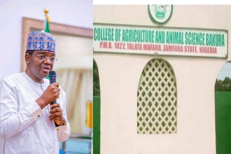 Latest news is that Governor Matawalle condemns abduction of School students, staff