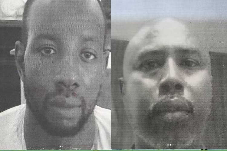 Naija news about Two men jailed six months for giving false information to EFCC