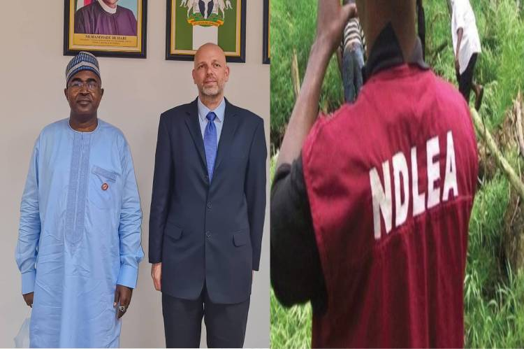 latest Breaking News about NDLEA: Marwa commends German government over 2 million Euro Dog Handling facility for NDLEA
