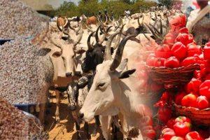 Kaduna Govt. bans transportation of livestock, shuts weekly market in Kawo