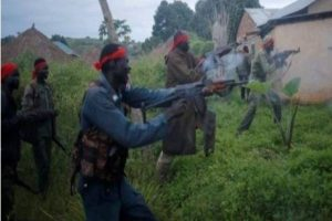 Bandits kill 20 persons in reprisal attack in Magami, Niger State
