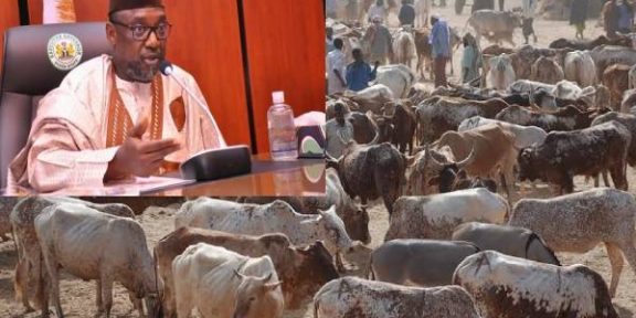 Latest news in Nigeria is that Niger suspends cattle markets, bans sale of fuel in jerrycans