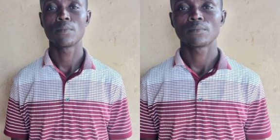 Latest Breaking News About NDLEA: Drug dealer, manager, 3 workers bag 75 years imprisonment