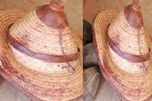 Police confirm killing of nine herders in Sokoto, identify perpetrators